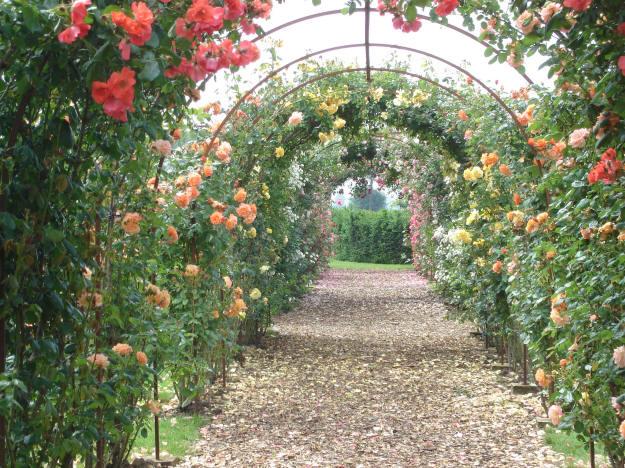 Belgische nederlandse en zwitserse open tuinen en open exotentuinen