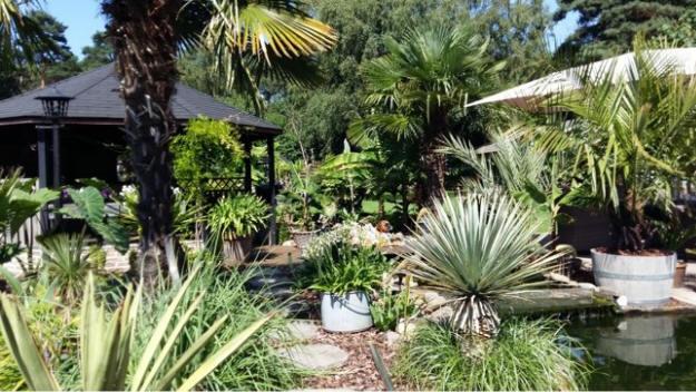 Zen Tuin Aanleggen : Belgische nederlandse en zwitserse open tuinen en open exotentuinen