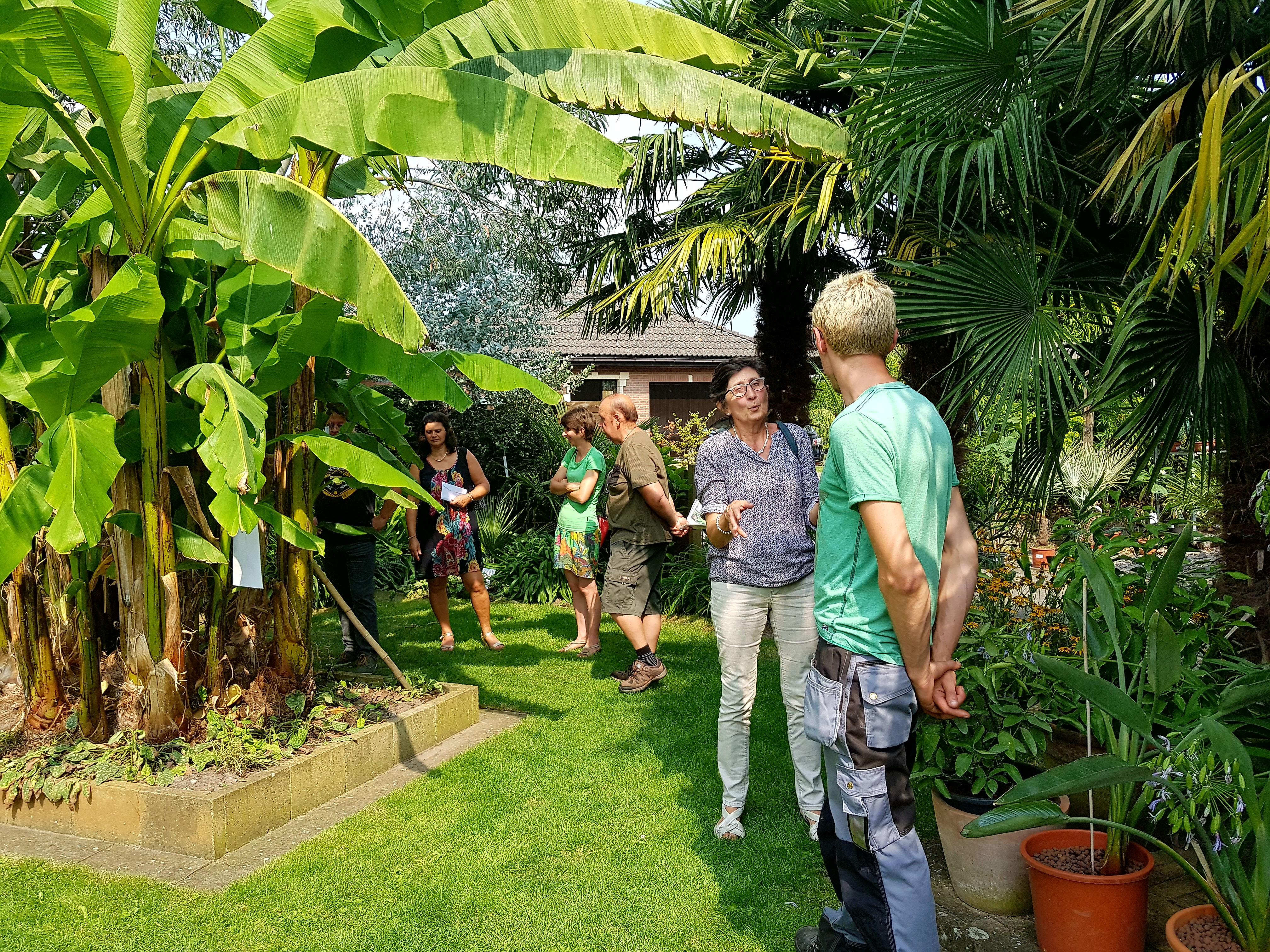 Belgische nederlandse en zwitserse open tuinen en open for Tuin inrichten planten